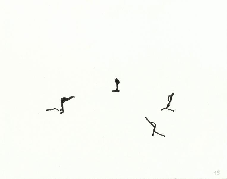 kormorane-015