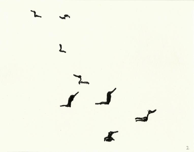 kormorane-02