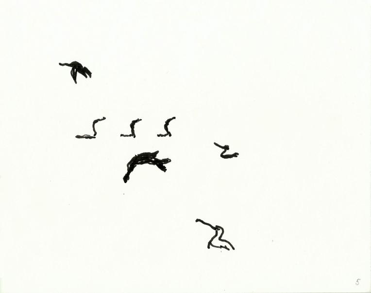 kormorane-05
