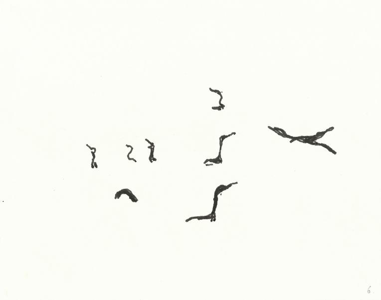 kormorane-06