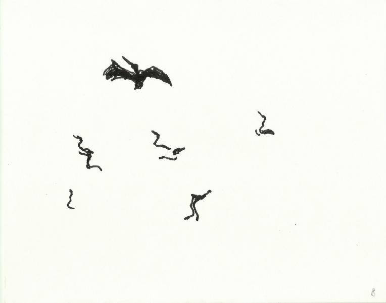 kormorane-08