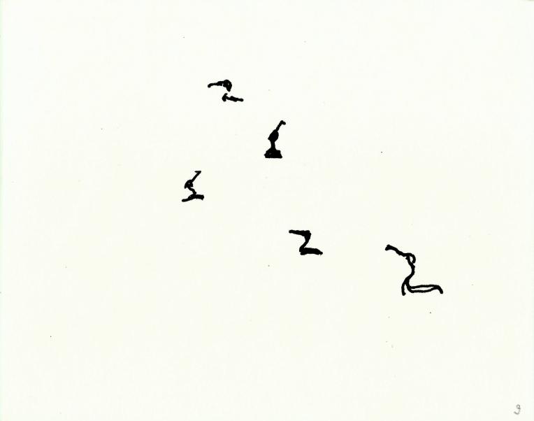kormorane-09